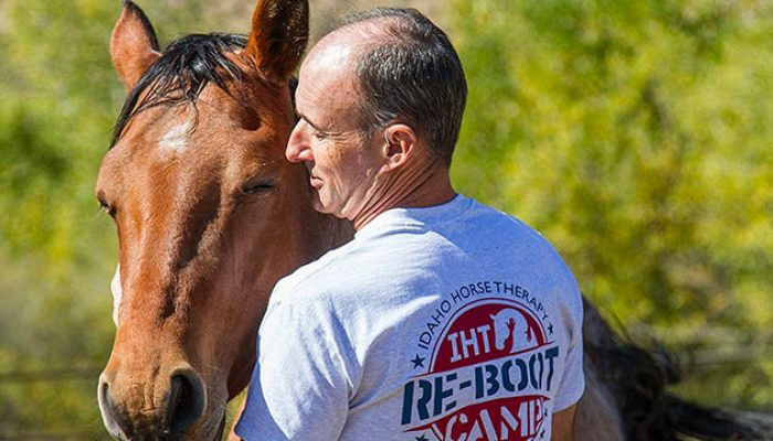 Vets find healing with horses